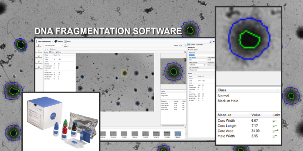All NEW DNA Fragmentation Software